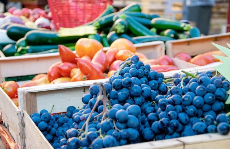 marché régional de Libos